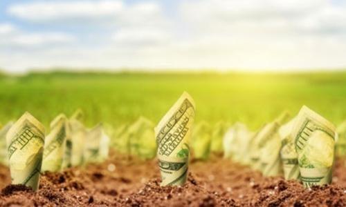 Protetto: Agribusiness: settore da accumulare – 10 aprile 2019 – ore 11