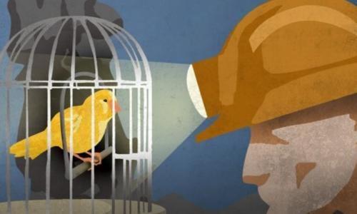 """""""Canary in the coal mine"""" – 13 maggio – ore 9,15"""