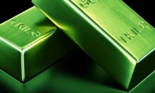 """Protetto: Long Term Investment: lo chiamano """"oro verde"""" ma non è quel che sembra – 10 ottobre 2019 – ore 15"""