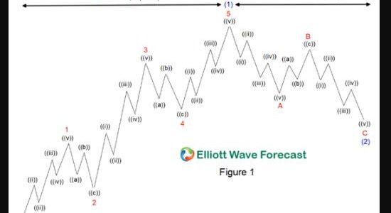 Vuoi saperne un poco di piu' sulla Teoria di Elliott? Leggi qua…. – 1 ottobre 2020 – ore 8,30
